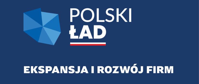 Nowy Ład-propozycje w zmianie systemu podatkowego w Polsce
